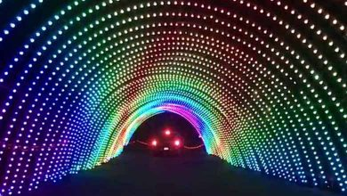 Photo of Cosmic Color Ribbons, Bulbs and Pixels